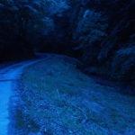 【広島】己斐峠はヤバイ心霊スポット?その理由は実際に起きた事件・事故にある?
