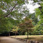 心霊スポット【東京】江古田の森公園は病院があった場所で心霊現象が多発する?