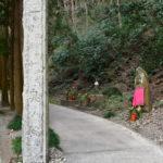 【愛知】岩屋寺の永代供養墓付近は心霊スポット?不思議な体験が多数起きる?
