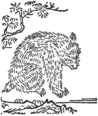 ムジナの画の画像